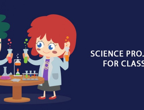 Science Projects for Class 9