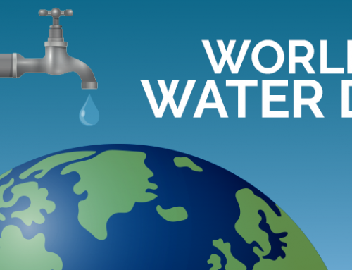 World Water Day – Nature for Water