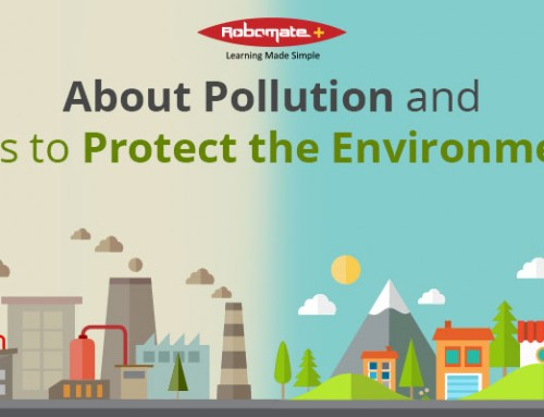 About Pollution and Tips to Protect the Environment